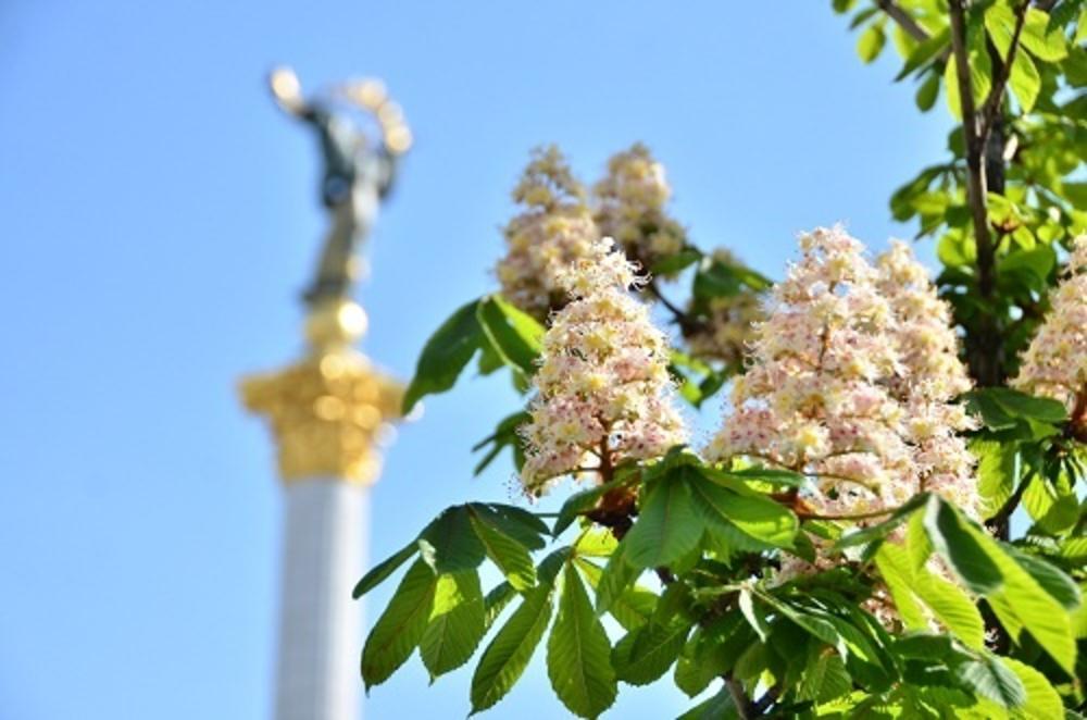 У столиці України з'явився свій власний аромат