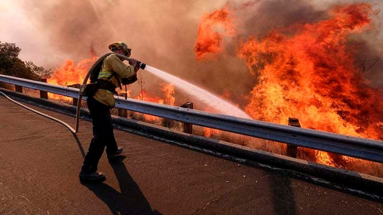 Жахливі пожежі на заході США забрали життя щонайменше семи людей