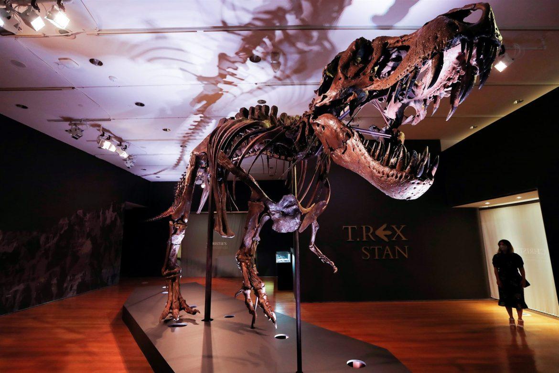 У США на аукціон виставили скелет знаменитого тиранозавра (відео)