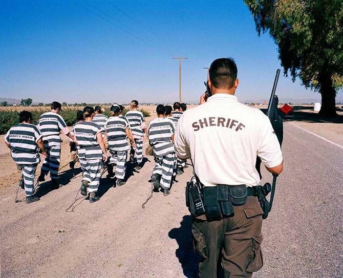 """У США охоронцям в'язниці пред'явили звинувачення через змушування засуджених дві години слухати """"Baby Shark"""""""