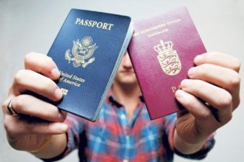 Діаспора відстоює впровадження в Україні подвійного громадянства