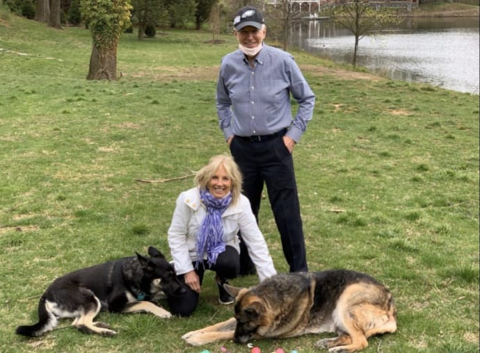 Собаки Джо Байдена залишили Білий дім після агресивного інциденту