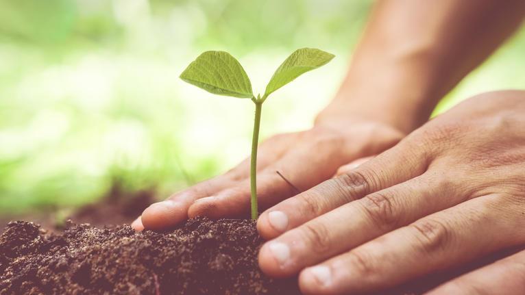 93% українців готові змінити свої звички на користь екології