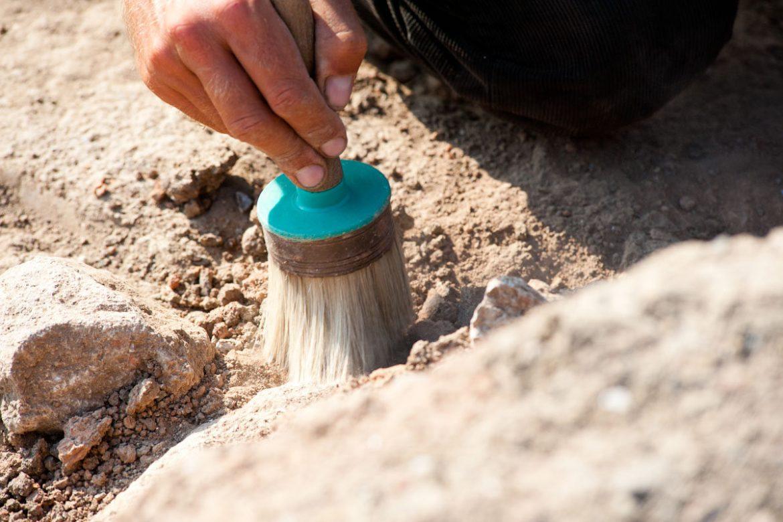 В Україні знайшли поселення часів Всесвітнього потопу